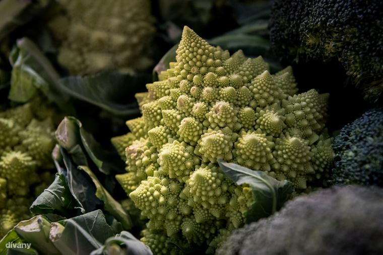 Például a gyönyörű pagodakarfiolt, ami a vadkáposzta egy termesztett változata.