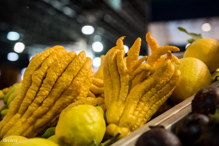 ...és itt a várva várt ronda citrom, amit úgy hívnak Buddha keze