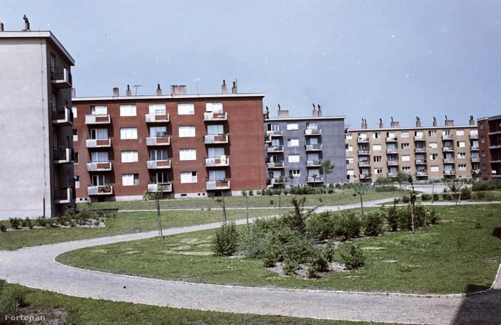 Csepel, Csillagtelep, a Rakéta és a Tejút utca házai a Jupiter utca felől, 1962 (Fortepan képszám: 29235)