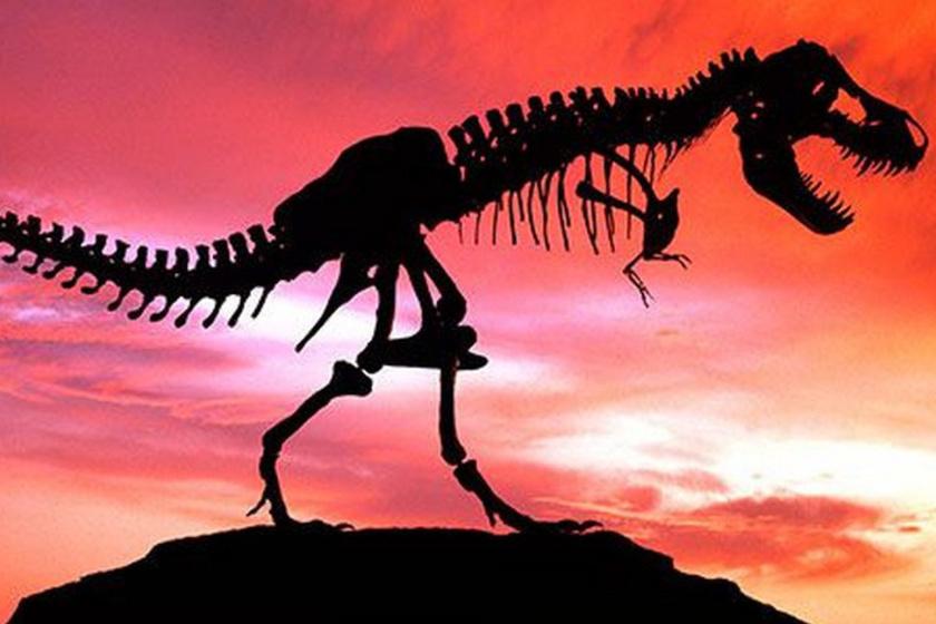 Újabb elmélet született a dinók kipusztulásáról