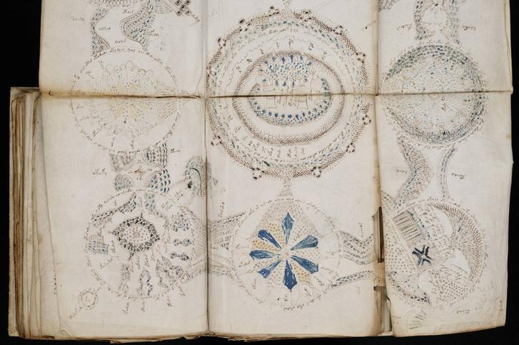Voynich Manuscript (158)