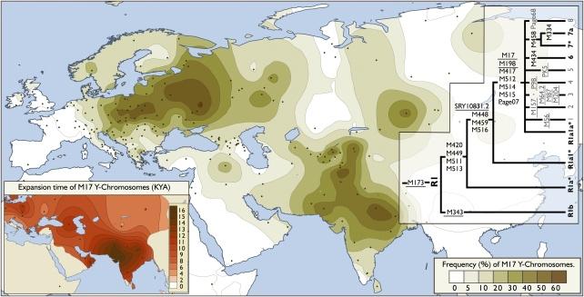 R1a haplotípus elterjedtsége Eurázsiában