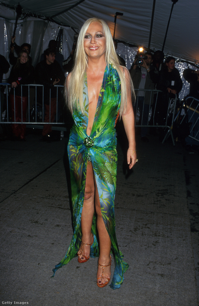 Az azóta ikonikussá vált levélnyomatos ruha az 1999-es 'Rock Style' tematikájú Met-gáláról.
