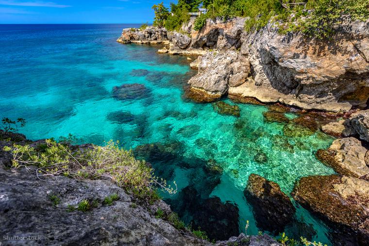 Miután először láttam A kék lagúnát, elhatároztam, hogy nem leszek én ügyvéd, orvos vagy titkosügynök, inkább elköltözöm egy lakatlan szigetre, és teljes harmóniában élek majd a természettel