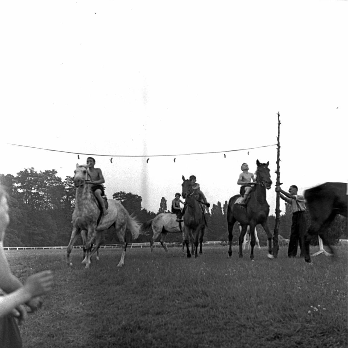 Azért Petanovits sem ment a szomszédba egy kis trükközésért. Az 1933-as Nemzeti és Hazafi DÍj után fújolással tüntettek ellene a fogadők. A háromévesek versenyében az első két helyet Petanovits lovai vitték el. Végrehajtó nyert Fokos előtt. Utóbbi volt a favorit, ezért rengetegen tettek rá pénzt. A fogadók úgy érezték átverték őket, Petanovits belenyúlt a versenybe. Főleg azután, hogy az előző évben Végrehajtóról terjedt el, hogy jobb, aztán a fontos versenyeket Fokos nyerte. A nagyot kaszáló bukmékerek azért tudtak örülni Petanovits ilyen sikereinek is.