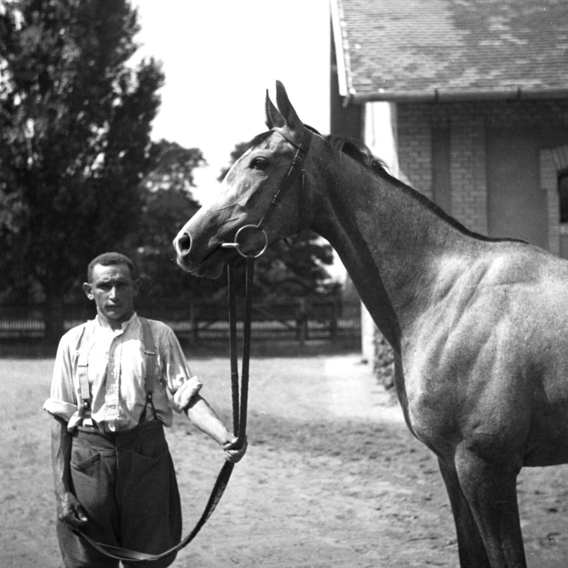 """A legtöbb magyar versenylovat több mint száz éve a Dunakeszi mellett található Alagon trenírozzák. Petanovitsnak is az itteni lóversenytelepen volt istállója. Sőt, valószínűleg éppen lovak szeretete miatt ő maga is kiköltözött családjával Dunakeszire. """"Uraságra hajló természete, gavalléros könnyelműsége és egy kicsit a játékszenvedélye is a zöld gyep felé terelte – ő volt az első a polgárok közül, akik futtattak még a városligeti gyepen."""" – írta róla nekrológjában az Ujság 1936-ban."""