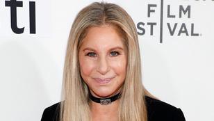 Barbra Streisand klónozta halott kutyáját