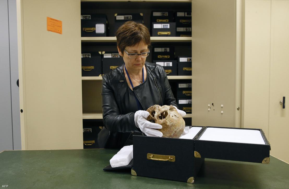 Az egyes számú cro-magnoni koponya