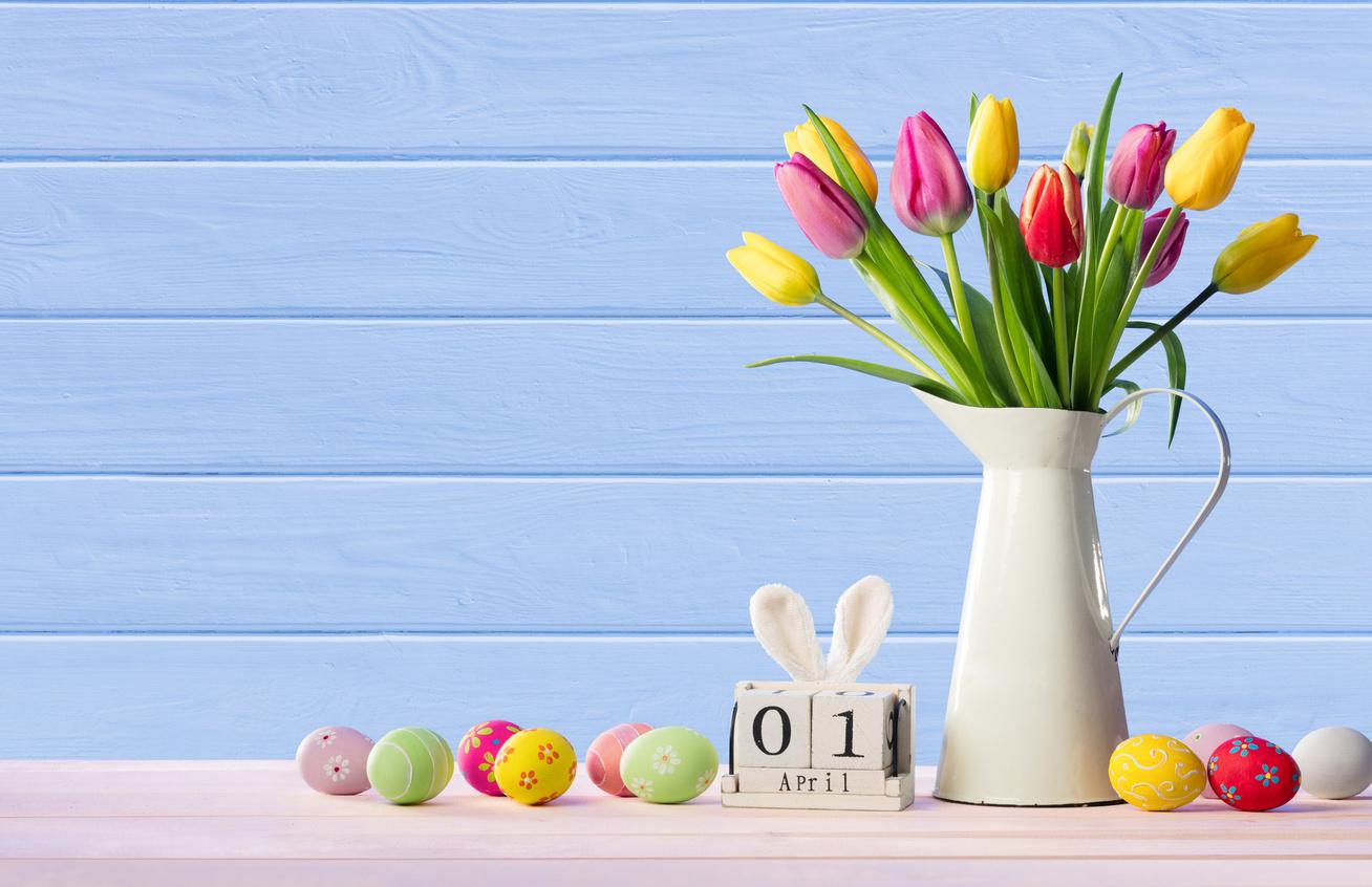 husvet-tulipan
