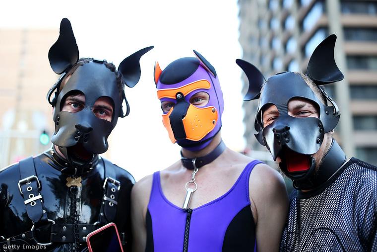 Ők kutyapózban szeretik, ahogy nézzük, nemcsak a szexet, hanem a felvonulást is.