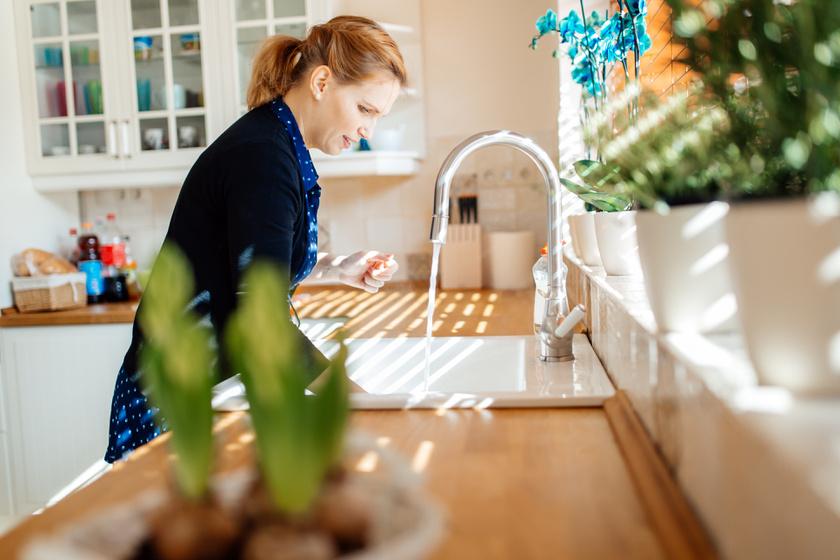 Salmonella és E. coli is lehet rajtuk: ez a konyha 5 legpiszkosabb pontja