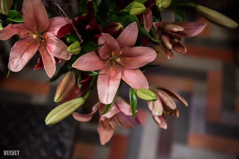 Természetesen a virágok is színben össze voltak hangolva a lakás berendezésével-dekorációjával, de hallgassuk tovább, mit mesélt Lakatos Márk a helyszínről!
