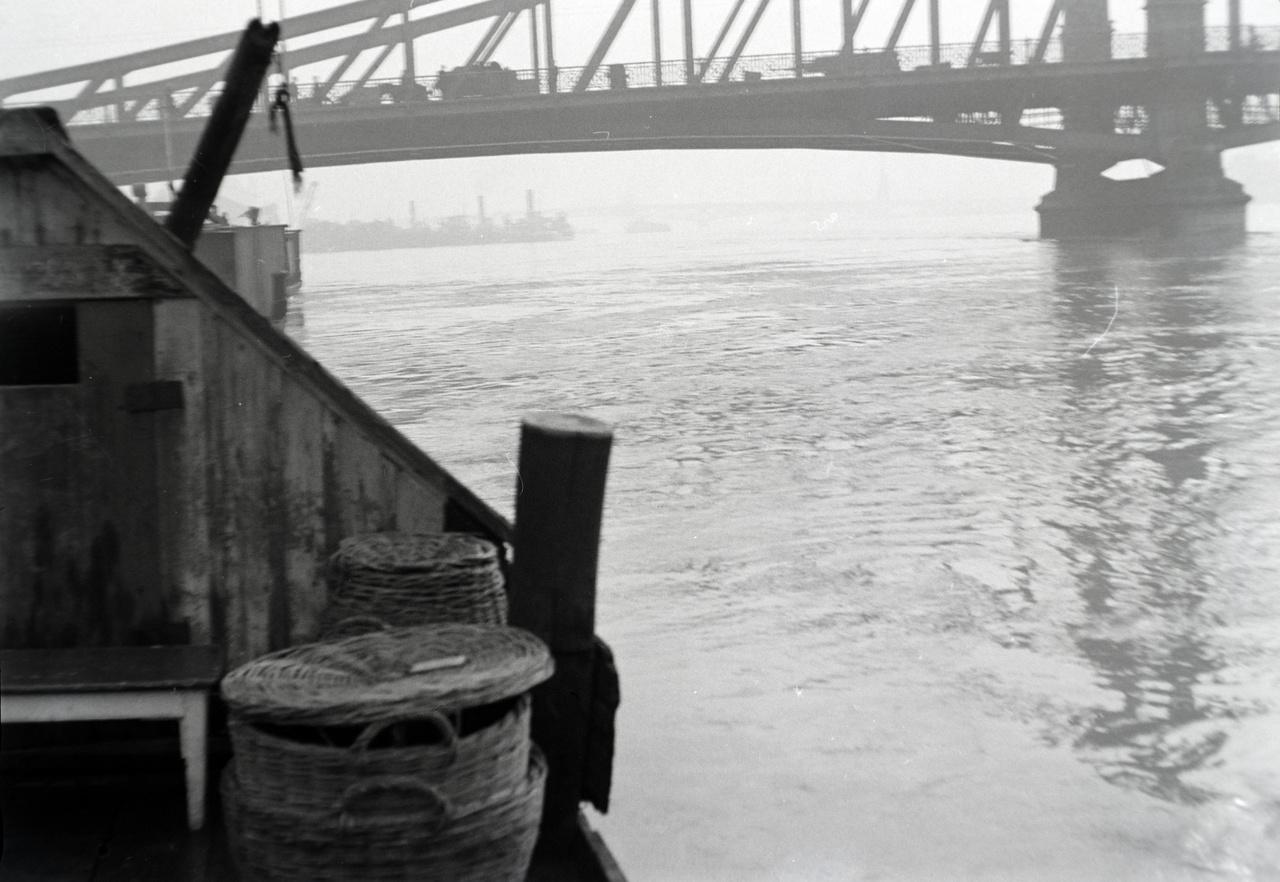 Halászbárka a Dunán a Ferenc József híd lábánál. A kép valószínű a múlt század elején készülhetett, a hídon csak lovaskocsi és lóvasút (omnibusz?) forgalom látható. A fővárosi Duna szakasz az ország rendkívül nagy halbőségnek örvendett régen is, és bármilyen furcsa, manapság is. A halászoknak nem kellett messzi vizekre evezni az eladni kívánt zsákmányért.