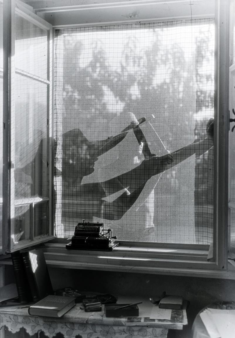 Árnyjáték vagy szúnyogháló-javítás? Élet a nyaralóban, 1937