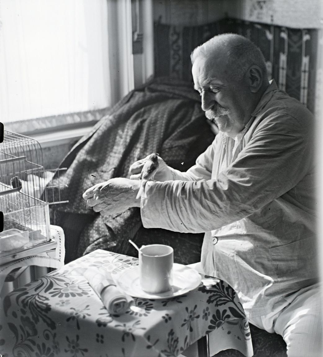 Reggeli utáni madarászás: a korszak kedvenc írójára, Herczeg Ferencre megszólalásig hasonlító pizsamás úr kalitkás háziállatával