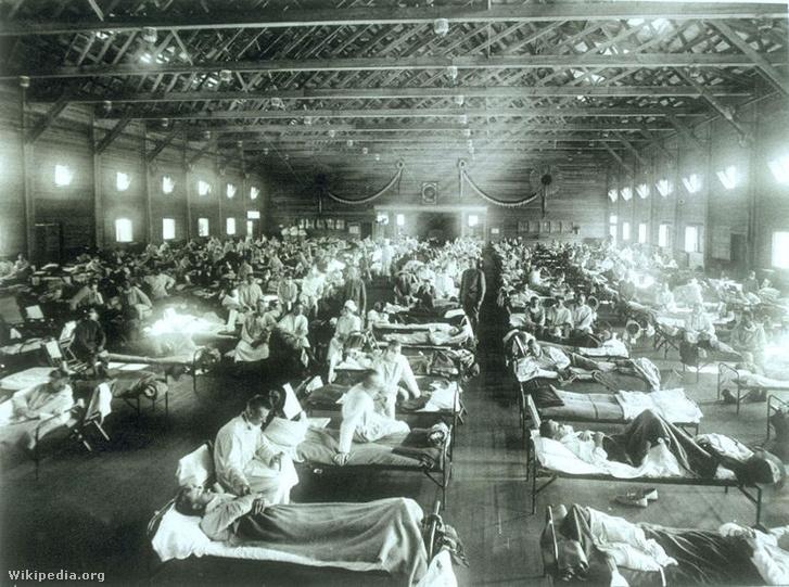 Influenzás betegek kórháza.
