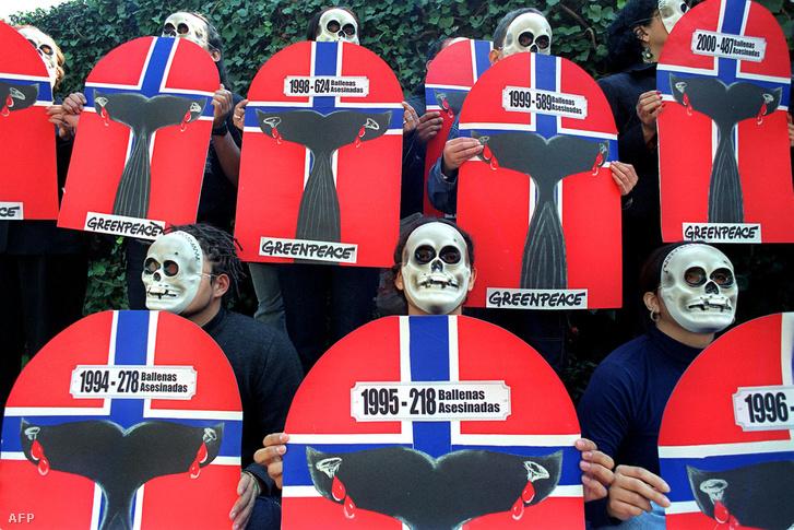 Norvég bálnavadászat ellen tüntető mexikói Greenpeace aktivisták 2001-ben