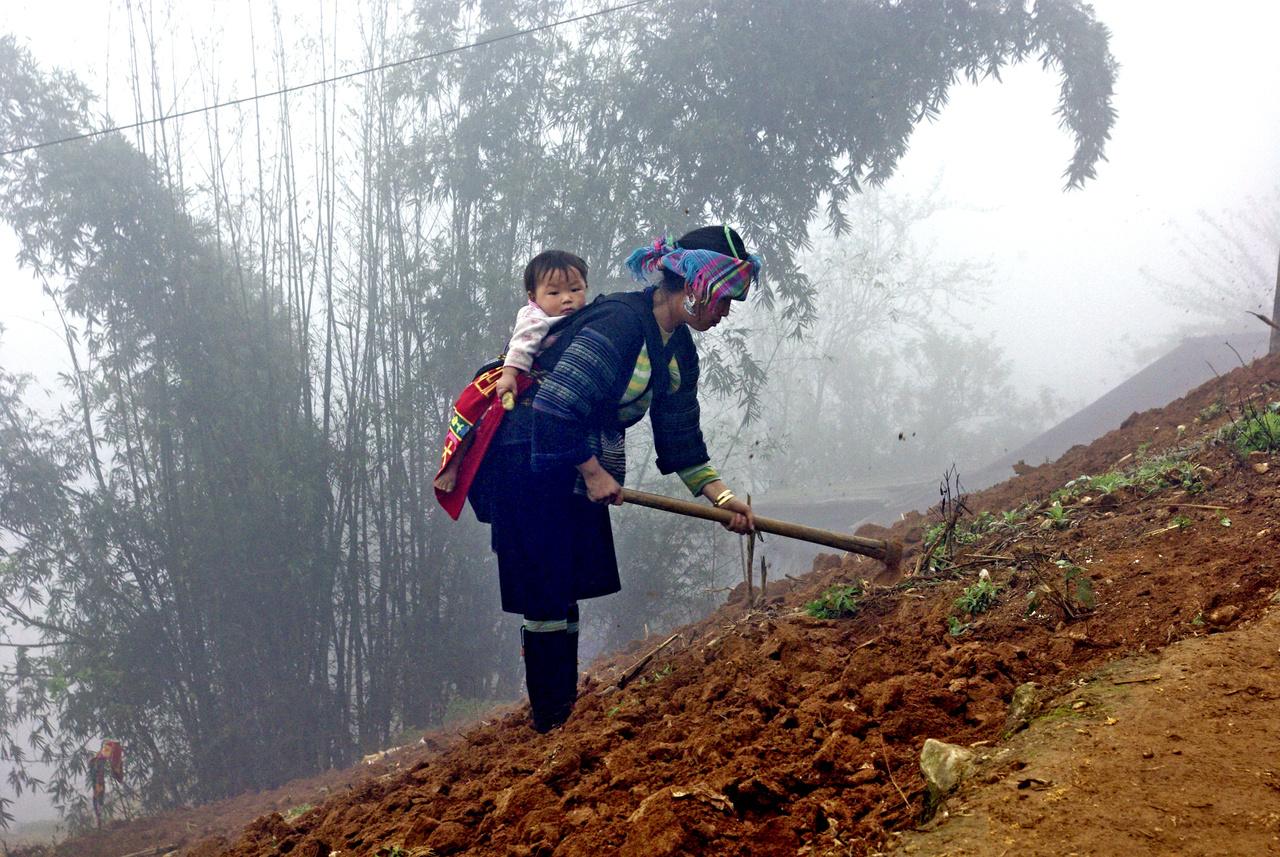 A hmongok még ma is csaknem önellátóak, nemcsak ételüket termelik meg, de ruháikat és alapvető használati eszközeiket is maguk készítik. A sámánhitből fakad az is, hogy a gyerekhordozókra védőjeleket hímeznek, hitük szerint így tudják megvédeni az újszülötteket és csecsemőket a démonoktól. A fonál csomózásának köszönhetően a démonok ugyanis virágnak hiszik a textilt és a kisgyereket, így nem vadásznak a lelkére. A világon nagyjából 14-15 millió hmong él, túlnyomó többségük Kínában, a vietnami hmong népesség közel 1,1 milliós.