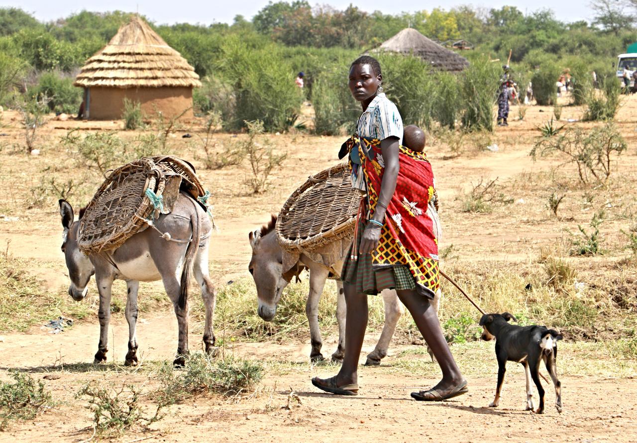 """Az Egyenlítő mentén elhelyezkedő Uganda északi régiójában él a karamojong törzs. Állattartással foglalkozó nomád népcsoport, amely férfi tagjai legalább annyi időt és energiát töltenek háborúskodással, mint marhapásztorkodással. Vagyis töltöttek, az ugandai kormány ugyanis 2011-ben megegyezést kötött velük, ami véget vetett a régióban dúló erőszakhullámnak: a karamojongoknál ugyanis a társadalmi státusz alapja, hogy kinek hány szarvasmarhája van, így rendszeresen loptak más törzsektől, miáltal nemcsak Ugandán belül, hanem a szomszédos Kenya és Dél-Szudán egyes népcsoportjaival is voltak rendszeresen összetűzéseik. """"A fiatal karamojong férfit már születésétől harcosnak nevelik"""" – mondták a szerzőnek az egyik faluban. A fájdalmat azonban a nők is megismerik, már nagyon fiatalon: a hegtetoválásuk karamojong hagyomány: a bőrt rituálisan felvagdossák, helyenként le is nyúzzák, a vágásokba különféle anyagokat, például hamut dörzsölnek, így a sebhelyek a gyógyulás után felpúposodnak."""