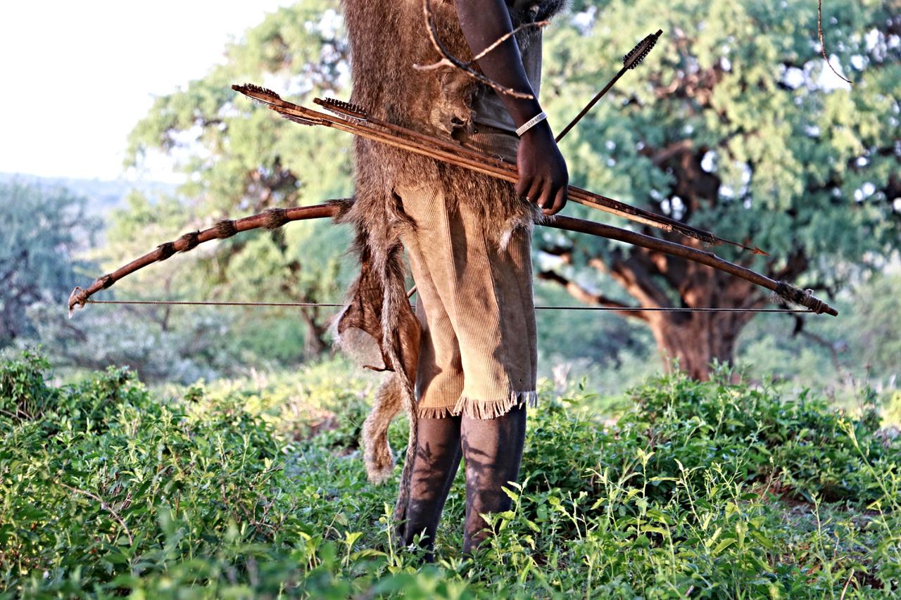 """Tanzánia északi részén él a hadza törzs, akikről az elmúlt években az ún. hadza diétáról szóló hírek miatt lehetett leginkább hallani. Az 55 milliós országban már csak mintegy 900-1000 hadza él, egy részük a mai napig vadászó-gyűjtögető életmódot folytat, a mindennapi élelmük beszerzése napi 4-6 órájukat is felemészti, a vadászathoz használt eszközeik semmit nem változtak az évszázadok alatt: íj és nyilak, valamint egy éles kés. A törzsek 25-30 fős csoportokban élnek, a tanzániai kormány a mai napig nem tudtak őket letelepedésre kényszeríteni. Annyira nem, hogy még a népszámlálásra is csak úgy tudják őket összegyűjteni, hogy """"meghirdetik egy jó héttel az esemény előtt, hogy zebrát lőttek a Serengetiben, és húsosztás lesz ingyen""""."""