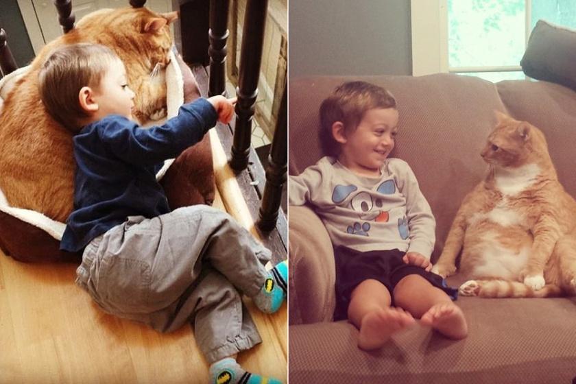 Kidobott cica lett a kisfiú legjobb barátja - Imádni való fotókat osztott meg róluk az anyuka