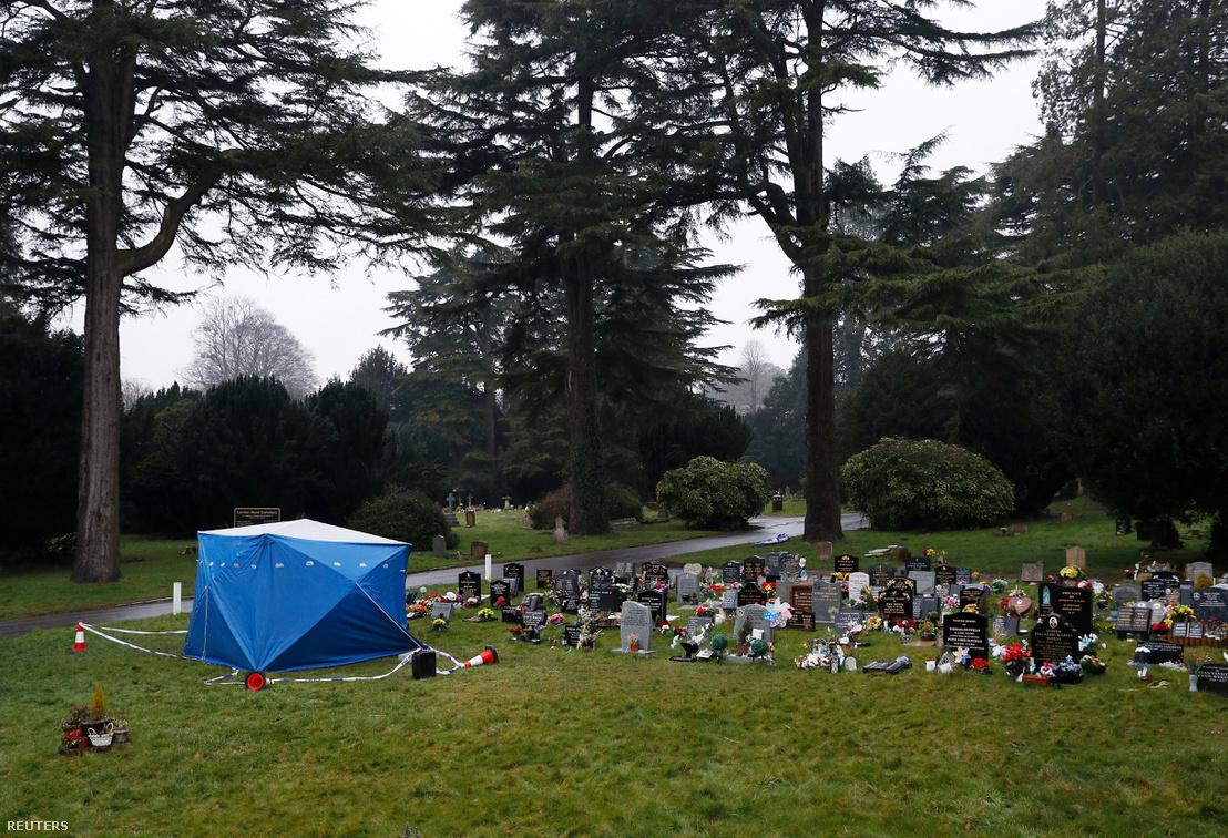 Alexander Szkripal - Szergej Szkripal fiának nyomozók által letakart sírja a Salisbury-i London Road köztemetőben.