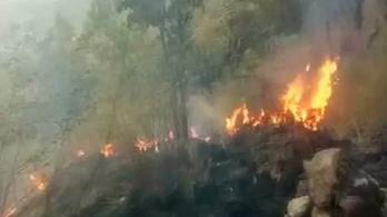 Több diák halt meg erdőtűzben Dél-Indiában