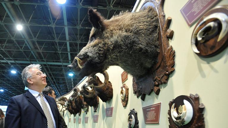Buktak már bele vadászatba miniszterek