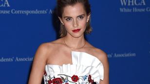 Úgy tűnik, Emma Watson a Glee egyik színészével jár