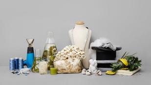 A H&M algával és gombával mentené meg a divatipart