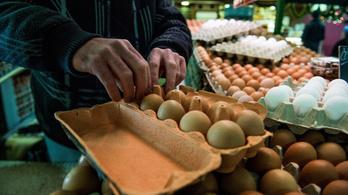 Drágulhat húsvétig a tojás