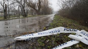 Szentendrei holttestek: nem zárható ki, hogy gyilkosság történt