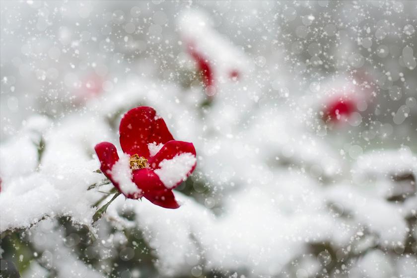 Még napokig havazni fog, és a -10 °C is visszatér: heti időjárás-jelentés