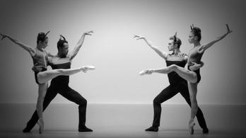 Csodás táncfilmen kel életre Picasso Guernicája