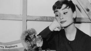 7 érdekesség, amit nem tudtál Audrey Hepburnről