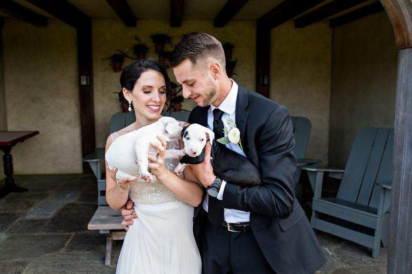 Elsőként két kutyust, név szerint Penny-t és Patch-t vették magukhoz, a feladat azonban keményebb diónak bizonyult, mint azt Becky-ék elsőre gondolták.
