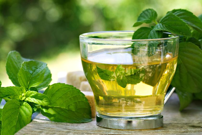 menta tea