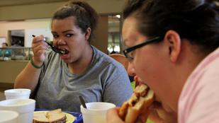Az elhízás rontja az ízlelést