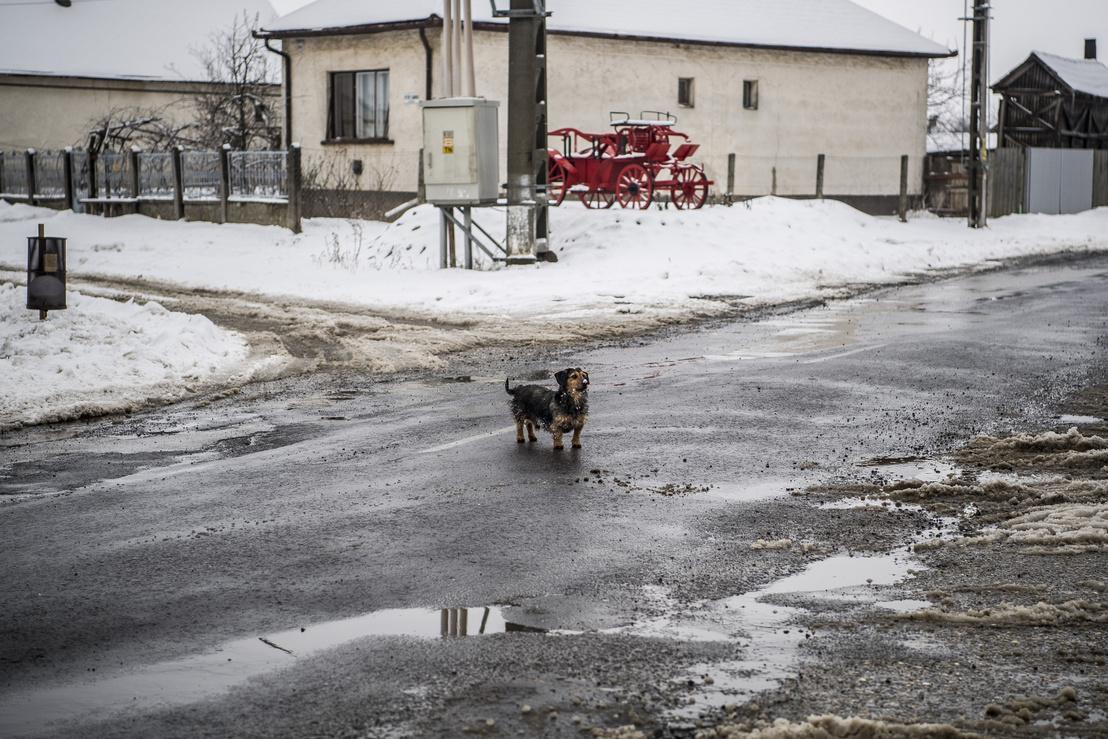 A havat még nem takarították el a mellékutakról, de még a fő út melletti járdáról sem.