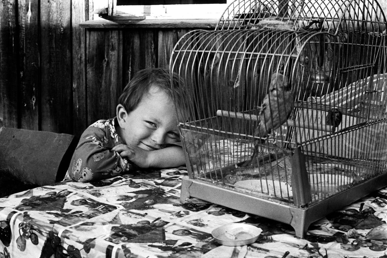 Egy vidám leningrádi kisfiú 1976-ban