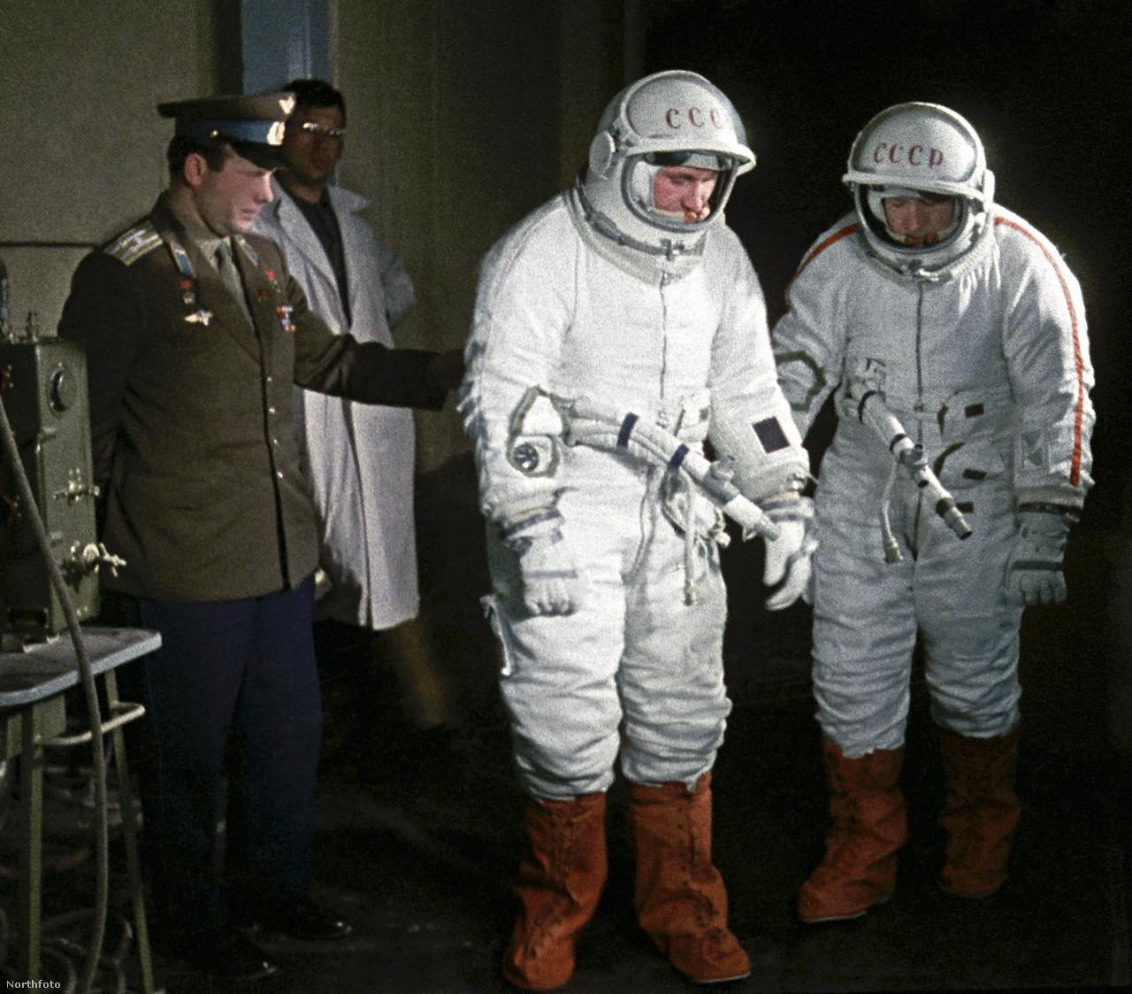 Gagarin a Voszhod-2 űrhajósainak, Leonovnak és Beljajevnek  segít szkafandert próbálni, 1965. március 1-jén.