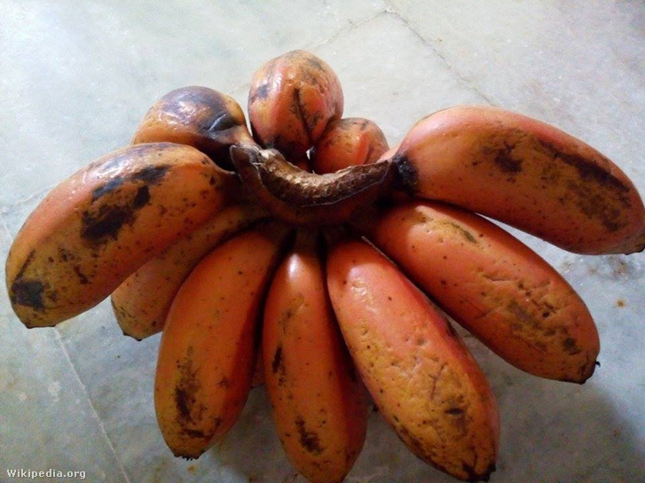 Red banana From Tamil Nadu