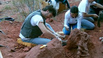 Kiásták Latin-Amerika legmenőbb dinoszauruszát