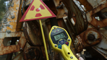 Radioaktív gombákat találtak Csernobilban, felküldték a SpaceX-szel az űrbe