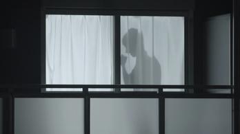 Árnyékpasik védhetik a nőket Japánban