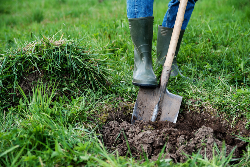A legváratlanabb dolgok, amiket emberek a hátsó kertjükben kiástak: nem csoda, ha a lapátot is elejtették