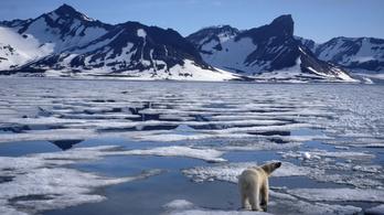 Búcsúzhatunk az Északi-sark jegétől