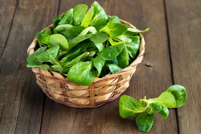 Zöld levelekből készült salátát naponta minimum egyszer kell enni, és a tányér harmadát, felét beborítani velük. Ezek rostjaikkal laktatnak, egyenletes vércukorszinthez segítenek hozzá, ami az agynak is jót tesz, és csökkenti a hangulatingadozásokat.