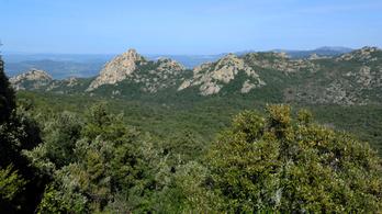 Kizöldültek az európai hegycsúcsok