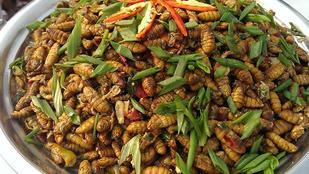 10 bizarr étel Indiából: selyemhernyótól a kutyahúsig